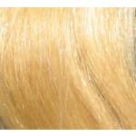 Sonderpreis wegen Lieferantenwechsel: 10 x 4cm Tape In Skin Weft indisches Naturhaar 40 cm goldblond